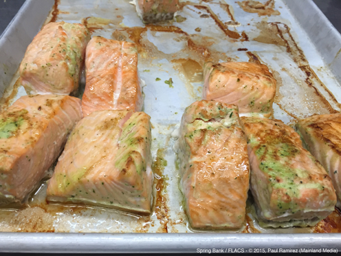 photo ~ Seared Salmon, recipe courtesy of B. Blossom Catering ~ Paul Ramirez ~ 2015-02-27 ~ Spring Bank presents Healthy Hearts ~ sputnyc
